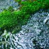 天然水?ミネラルウォーター?水の種類